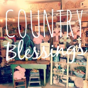 Country Blessings Jefferson Iowa, Rustic art industrial, shabby chic